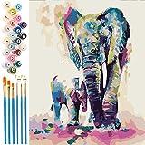 EXTSUD Malen nach Zahlen, Paint by Numbers DIY Handgemalt Ölgemälde Set selber auf Leinwand malen...
