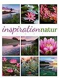 Inspiration Natur Kalender 2021, Wandkalender im Hochformat (50x66 cm) - Inspirations- /...