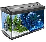 Komplett ausgestattete 60L Aquarium Set–mit Energiespar-LEDs, integrierter Tag & Nacht...