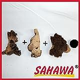 SAHAWA Wurzel, Mangrove, 3 Mopani+ Mooskugel Gratis Aquarium, Terrarium Deko ca. 12-15 cm