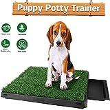 Oppikle Hundeklo Hunde Toilette Echtem Rasen Welpentoilette Trainingsunterlage für Kleine Hunde...