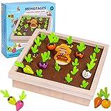 Sunshine smile holzspielzeug Montessori,Karotte Spielzeug,sortierspiel Holz für Kinder,motorik...