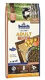 bosch HPC Adult mit frischem Lachs & Kartoffel | Hundetrockenfutter für ausgewachsene Hunde aller...