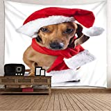 Dreamdge Christmas Theme Wall Tapestrys Dog with Christmas Hat and Scarf, Polyester Tapestry Wall...