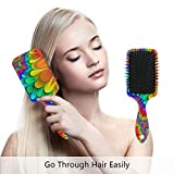 Bunte Pfauenhaarbürste, beste Entwirrungsbürste, für alle Haartypen, nass oder trocken, und für...