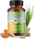 Raibu® Kurkuma Gerstengras Kapseln Bio (270 x 700 mg) Vegan - Curcuma und Gerstengras Mix im...