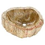 Divero HF55745 versteinertes Holz Waschschale Aufsatz-Waschbecken Handwaschbecken Fossil max. 22 kg...
