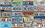 OPO 10 - Los mit 20 USA-Kfz-Kennzeichen aus Metall - Repliken von echten amerikanischen Kennzeichen...