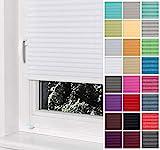 Home-Vision® Premium Plissee Faltrollo ohne Bohren mit Klemmträger / -fix (Weiß, B75cm x H120cm)...