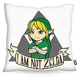 VOID I am not Zelda Kissenbezug Kissenhülle Polyester wasserfest Outdoor Game Gamer Spiel Hyrule,...