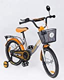 Triway Kinderfahrrad 20 Zoll Dream Bike Platinum Special Edition Silver/orange inkl. Fahrradkorb u....