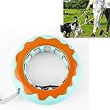 PetHome123 Roll Leine Hundeleine Rollleine Ausziehbar Personalisiertes Hundehalsband Mit...