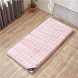 XER Tatami Bodenmatte, gedruckte Gewaschene Matratze Student Schlafsaal Matratze, Outdoor Home Boden...