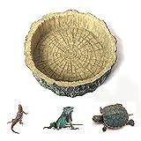 PIVOT 1 Stück Reptile Feeder Dish, Reptile Näpfe, Reptilienfutterspender...