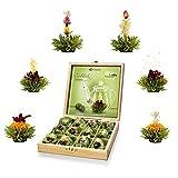 Creano Teeblumen Geschenkset in Teekiste aus Holz, 12 Erblühtee in 6 Sorten grüner Tee fruchtig...