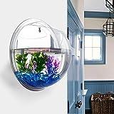 Idylische Blase Schssel Pflanze Aquarium aus Acryl mit Wandhalterung Blumentopf GartenTerrasse...