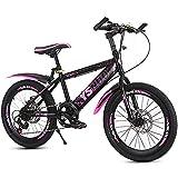 Mountainbike Fahrrad 20 Zoll jung & mädchen kohlenstoffstahlrahmen mit doppelscheibenbremsen vorne...