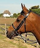 Heritage English Kappzaum Leder Pferd oder Pony Trensenzaum mit erhabenem gepolstert Nasenriemen