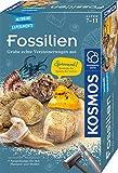 Kosmos 657918 Fossilien Ausgrabungs-Set, Grabe echte Versteinerungen und Bernstein selbst aus, mit...