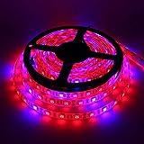 Ameginer LED Wachsen Licht IP65 Wasserdicht DC12V Geführte Anlage Wachsen Streifen Licht für...