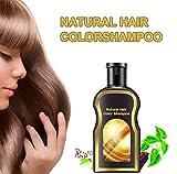ZYYIN Natrliches Polygonum Multiflorum Shampoo, Antischuppenshampoo gegen feuchtigkeitsspendendes...