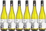 Bio mit Gesicht Weißwein Riesling trocken Qualitätswein von der Mosel, Deutschland (6 x 0.75 l)