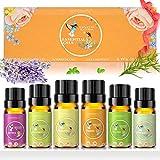 Ätherische Öle Set 6er Pack, 100% Pure Duftöl für Diffuser, Vegan & Naturrein Geschenk, 10ml x 6...