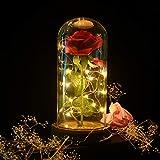 Shirylzee Rose Glas Licht Rose im Glas Glaskuppel Künstlich Rose Lampe EIN Holzsockel LED-Licht der...