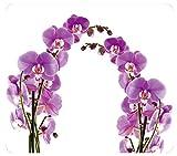 WENKO Multi-Platte Orchideenblüte - für Glaskeramik Kochfelder, Schneidbrett, Wandblende,...