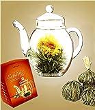 Creano Erblüh-Tee, Teeblume 1 Geschenk-Set 6 Teekugeln und 1 Glaskanne