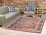 SANAT Teppich Vintage - Modern Teppiche fr Wohnzimmer, Kurzflor Teppich in Mehrfarbig, ko-Tex 100...