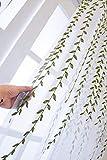 QIANSHI Voile Fenstervorhang mit Ösen Vorhang Flächenvorhänge Clear Sailing for Wohnzimmer und...