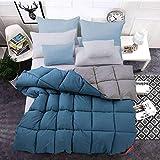 Almondcy revital daunendecke,Bettdecke weiße Gänsedaunendecke Winterdecke Dicke warme Bettdecke...