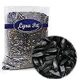 Lyra Pet® 25 kg Sonnenblumenkerne schwarz Wildvogelfutter Vogelfutter Ernte 2020