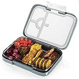 FINEW Hochwertig Bento Box Kinder, Lunchbox Mit Fächern, Luftdichte Auslaufsicher Brotzeitbox,...
