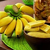 Benoon Bananensamen, 1 Beutel Bananensamen Süße Samen Mit Hoher Keimrate Frische Pflanzensamen...