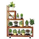 SXRDZ Indoor-Pflanzengarten-Garten-Rack, vierschichtige Pflanzenregal,...