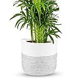 Aufbeahrungskorb aus Baumwolle| Geflochtener Blumentopfkorb | Pflanzengefäß mit Griffen |...