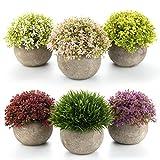 T4U Kunstpflanze Künstliche Topfpflanze Blumen Gras Bonsai mit Topf 6er-Set klein, Zuhause Wohnung...