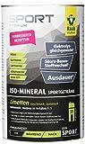 Raab Vitalfood Iso Mineral Limette, isotonisches Getränk, Getränke-Pulver, leicht löslich,...