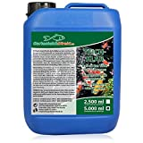 GartenteichDirekt Teichklar Teichklärer für den Gartenteich 5 Liter (GRATIS Versand in DE -...