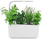 Tregren LED T6 Kitchen Garden, weiß, 34,5 x 17,5 x 44 cm