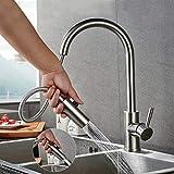 Lonheo Hochdruck Wasserhahn Küche ausziehbar 360° drehbar Küchenarmatur mit 2 Strahlarten...