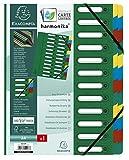 Exacompta 55243E Premium Ordnungsmappe Harmonika. Aus extra starkem Colorspan-Karton DIN A4 24...