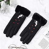 ZAJIWF Damen Warme Handschuhe, Winter Plus Velvet Windschutzscheibe Touch-Handschuhe,...