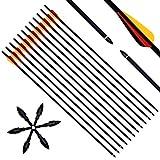 Narchery 12 Stck Pfeile fr Bogenschieen, 31 Zoll Carbonpfeile Bogenpfeile mit Kunststoffbefiederung,...