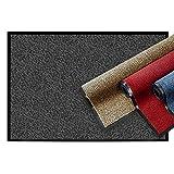 casa pura® Premium Fußmatte   Sauberlaufmatte für Eingangsbereiche   Fußabtreter mit Testnote...
