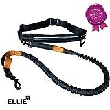 Ellie Premium Jogging Hundeleine mit verstellbarem Bauchgurt - 175cm Dehnbare Laufleine fur kleine...