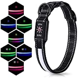 Iokheira LED Flashing Dog Collar, 7 Lighting Modes USB Rechargeable Adjustable Dog Collar, Soft...