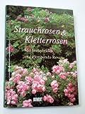 Strauchrosen und Kletterrosen: Mit Teehybriden und Floribunda-Rosen